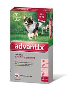 Advantix Chien moyen 10 à 25 kg- 4 pipettes antiparasitaires 2,5 ml