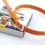 Chiguo Collier Anti Puces Chien Essentiel Naturel peut Anti Parasitaire Tique Efficace 3 Mois Collier pour Chiens
