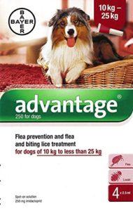 Advantage 250 pour chiens 10 – 25 kg 4 pipettes