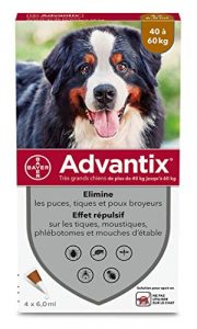 ADVANTIX Très Grand Chien – Anti-Puces et Anti-Tiques – 40-60KG – 4 Pipettes