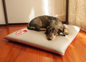 Coussin Matelas orthopédique pour chien M – TISSU TECHNIQUE ANTIBACTERIEN @PureTex, DESINFECTANT, imperméable, non allergique 70*70*6cm, Beige gris