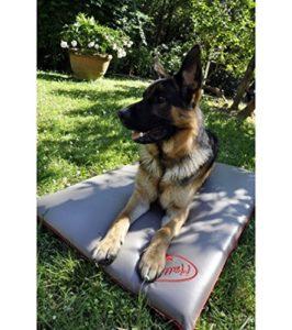 Coussin Matelas orthopédique pour chien XL – TISSU TECHNIQUE ANTIBACTERIEN @PureTex, DESINFECTANT, imperméable, non allergique 110*70*6cm, Beige gris