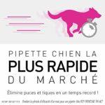 FRONTLINE Tri-act Chien – Anti-puces et anti-tiques pour chien – 5-10kg – 6 pipettes