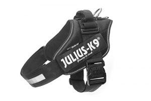 Julius K9 IDC Harnais pour chien Noir 1 (65 – 85 cm / 23-30 kg)