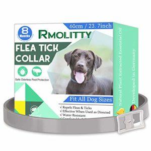 Rmolitty Collier Anti Puces Chien, Naturel Imperméable Prévention Anti Tiques Protection de 8 Mois pour Grand Moyen Petit Chien (60cm)