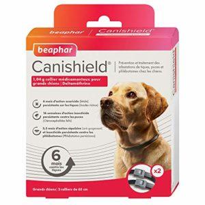 BEAPHAR – CANISHIELD 1,04 g – Lot de 2 colliers antiparasitaires pour grands chiens – Substance active : Deltaméthrine – Agit contre les tiques, les puces et les phlébotomes