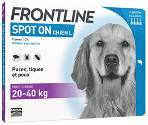 Frontline Spot On Chien 20/40 kg 4 pipettes antiparasitaires