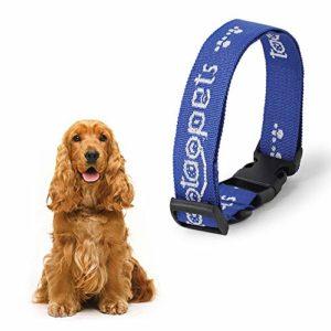 ÖSSZEFUT Collier réfléchissant pour chat solide et sûr pour chiens, nylon, colliers de chat, colliers pour animaux domestiques, collier pour animaux de compagnie