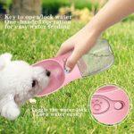 FTLTOP Bouteille d'eau pour chien 550 ml Distributeur d'eau portable anti-fuite en plastique de qualité alimentaire