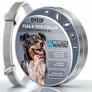 DYEOF Collier anti-puces anti-tiques pour chien – Protection 12 mois – Hypoallergénique, réglable et imperméable – Traitement contre les puces – Huile essentielle naturelle