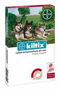 1 collier Bayer Kiltix pour grand chien.