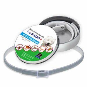 Collier anti-puces pour animaux de compagnie, collier pour la prévention des puces et des tiques efficace et sans danger pour les chiens et les chats, pour éliminer les parasites des moustiques contre