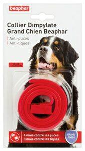 BEAPHAR – Collier Dimpylate antiparasitaire pour grand chien – Protège votre chien contre les puces et les tiques – Jusqu'à 4 mois de protection – Résiste à l'eau et à l'humidité – Rouge